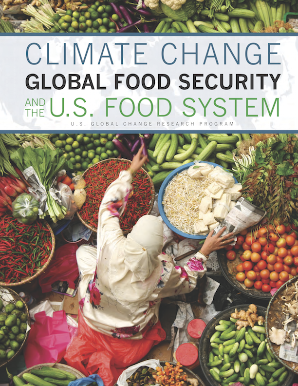 climate change global food security and the u.s. food system