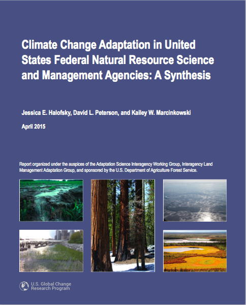 Climate Change Adaptation in United States Federal Natural Resource Science and Management Agencies: A Synthesis