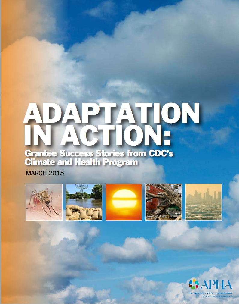 Adaptation in Action (cover)