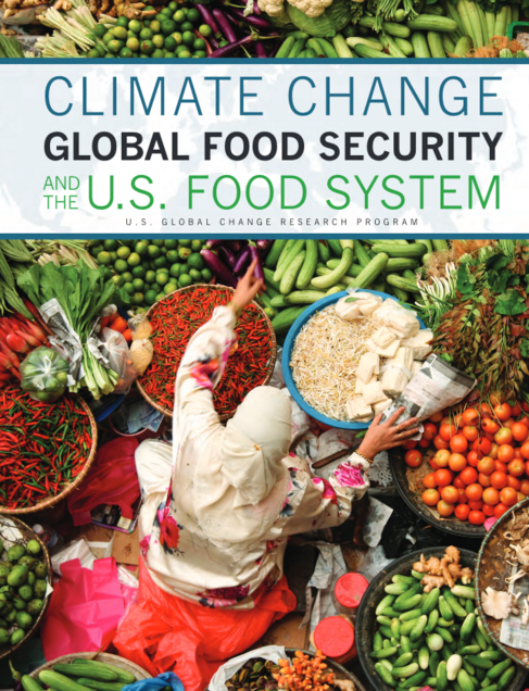 Climate Change, Global Food Security, and the U.S. Food System (2015)