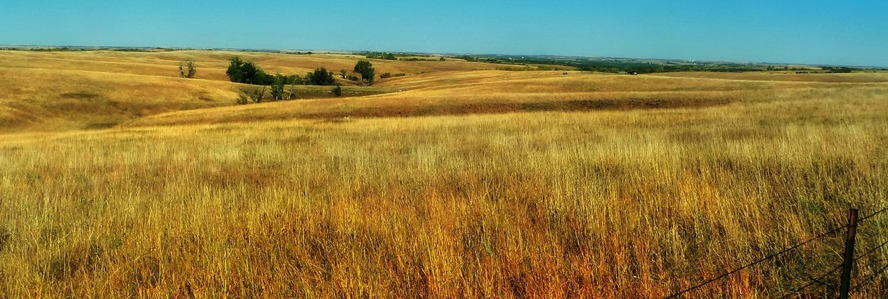 Nebraskan plains