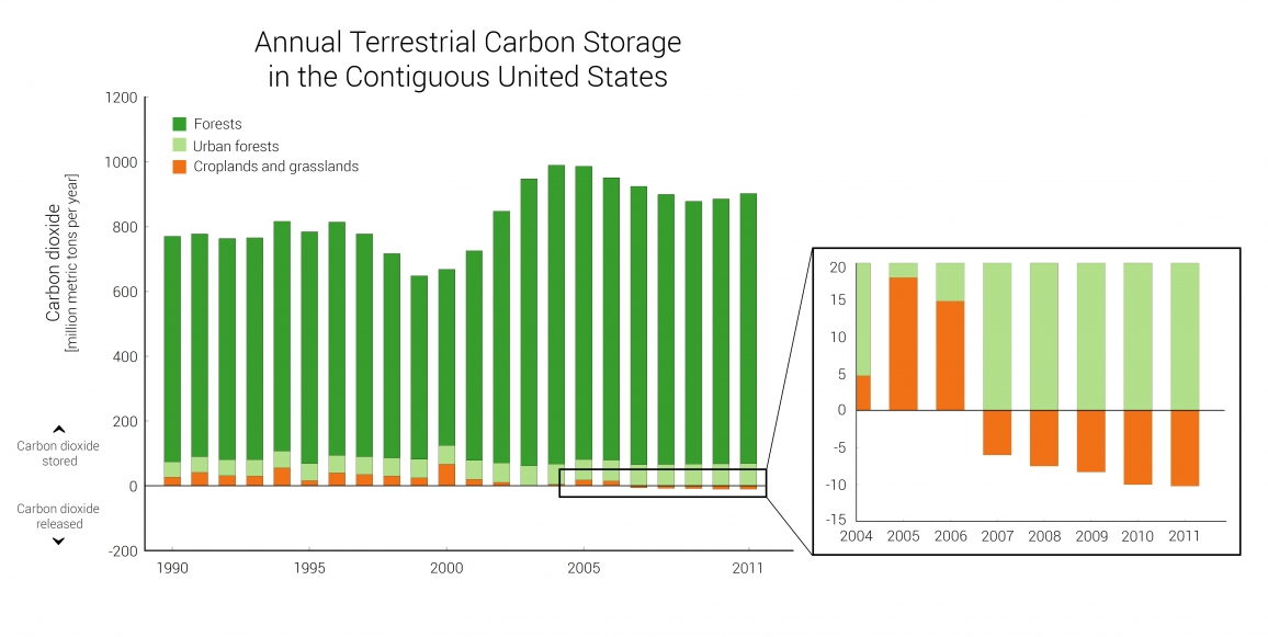 Indicator: Terrestrial Carbon Storage