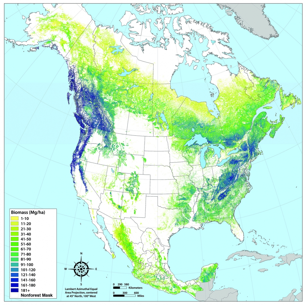 This image shows the distribution of aboveground forest biomass across North America, measured as milligrams of biomass per hectare (mg/ha).