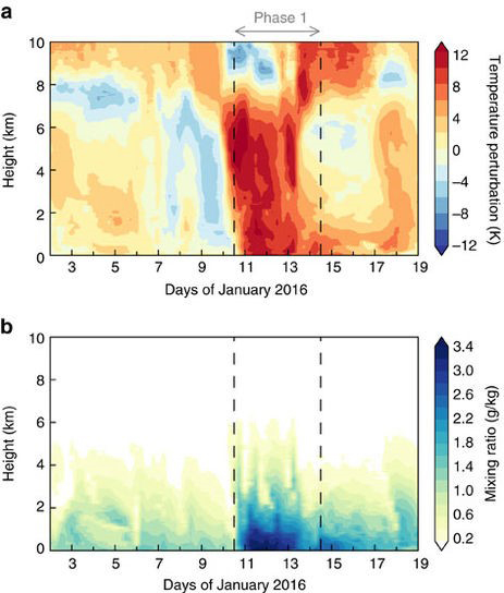 The January 2016 melt event on the West Antarctic ice sheet was captured by satellite and surface observations.