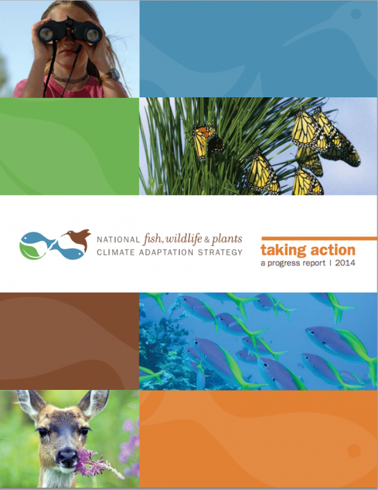 Case studies in the 2014 Progress Report illustrate how the Strategy is being applied to promote adaptation on multiple scales and in a variety of ecosystems.
