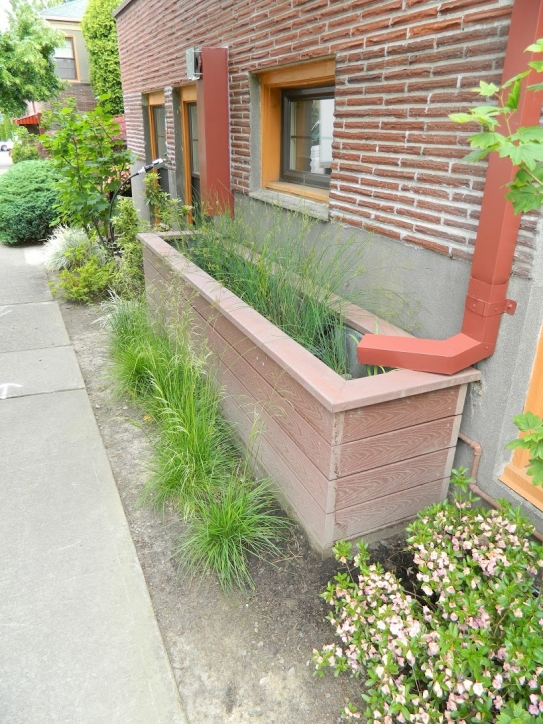 Green infrastructure projects, such as this stormwater planter, help to collect and absorb runoff, among other benefits. Local-level capacity and reliable cost-benefit information are needed to effectively incorporate such solutions into stormwater manage