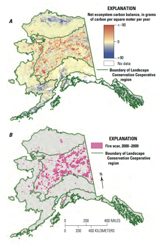 Spatial distribution of A, annual carbon loss and gain across upland Alaska 1950–2009 and B, historical fire scars from 2000–2009 among the five Landscape Conservation Cooperative (LCC) regions.