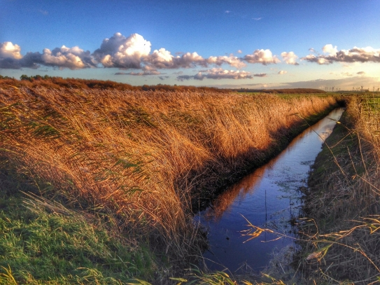 Water sustainability is linked to climate