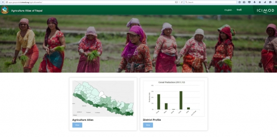 Implementing Data Services for Development