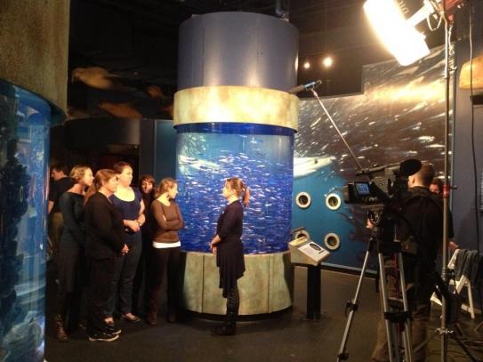 An interpreter talks to aquarium visitors. (Credit: NNOCCI)