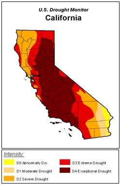 Focusing on the California Drought