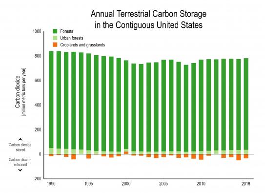 Terrestrial Carbon Dioxide Emissions