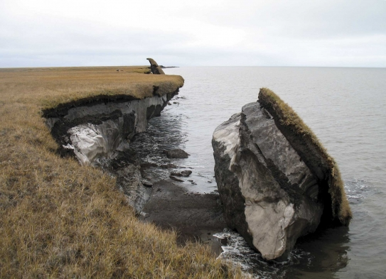Thawing permafrost releases greenhouse gases into the atmosphere