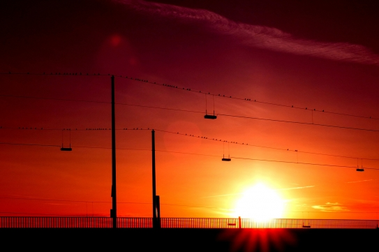 Sun setting over power lines