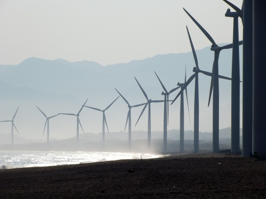 A coastal wind farm
