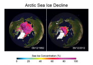 Arctic Sea Ice Decline
