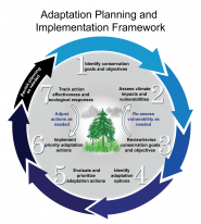 Adaptation Planning and Implementation Framework