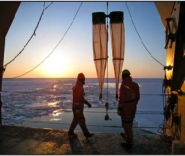 Bering Sea Project Scientists
