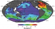 Anthropogenic CO2 in the Ocean
