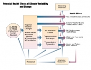 Potential Health Effects of Climate Variability and Change