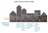 Urban Heat and Public Health