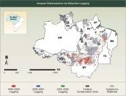 Amazon Deforestation via Selective Logging