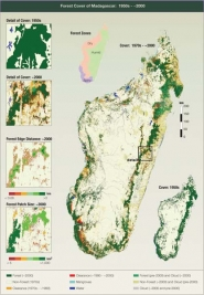 Forest Cover of Madagascar