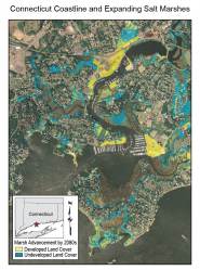 Connecticut Coastline and Expanding Salt Marshes