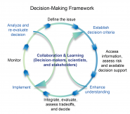 Decision-Making Framework