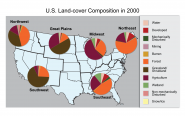 U.S. Land-Cover Composition in 2000