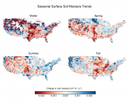 Seasonal Surface Soil Moisture Trends