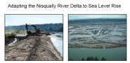 Adapting the Nisqually River Delta to Sea Level Rise