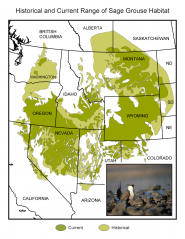 Historical and Current Range of Sage Grouse Habitat