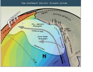 The Southeast Pacific Climate System
