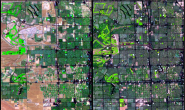 Land cover change in Nevada