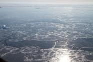 Sea Ice Off Eastern Greenland