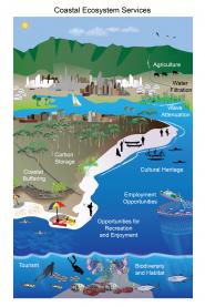 Coastal Ecosystem Services
