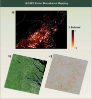LEDAPS Forest Disturbance Mapping