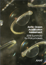Arctic Ocean Acidification