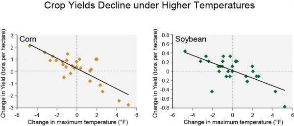Crop Yields Decline under Higher Temperatures