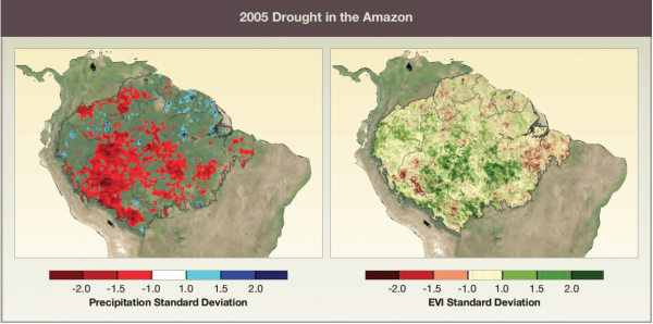 2005 Drought in the Amazon