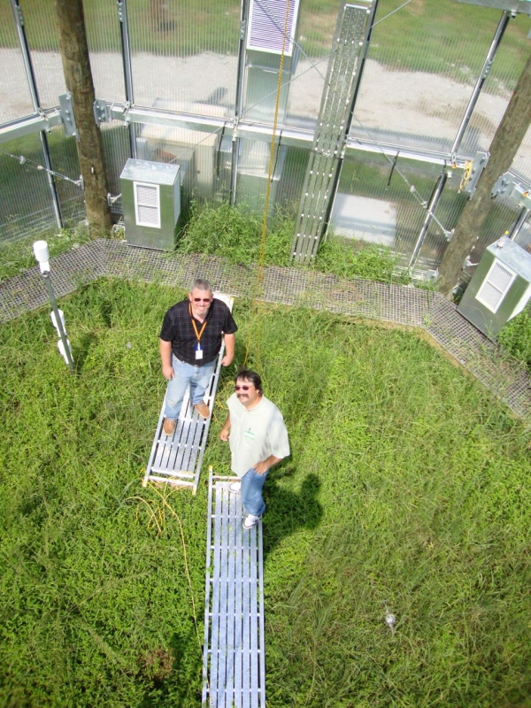 Experiment to Understand Spruce and Peatland Responses to Climate Change