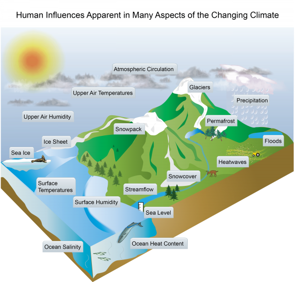 Human Influences Apparent in Many Aspects of the Changing Climate