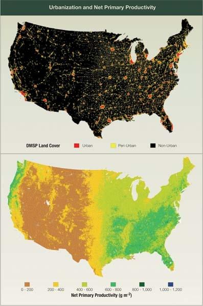 Urbanization and Net Primary Productivity
