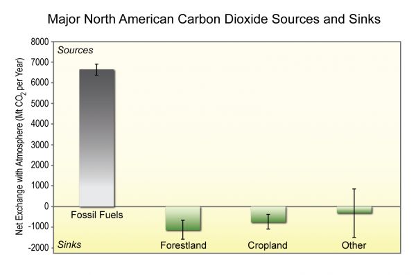 Major North American Carbon Dioxide Sources and Sinks