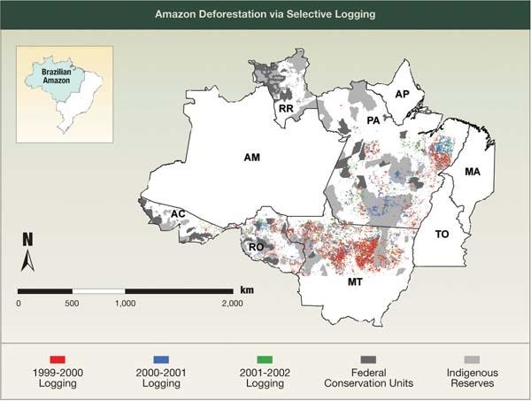 Amazon Deforestation via Selective Logging