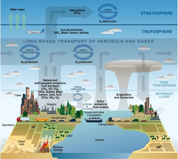 Chemical and Transport Processes Related to Atmospheric Composition