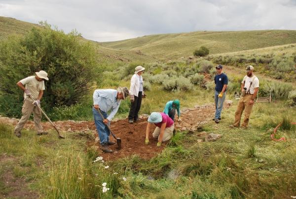 Sagebrush habitat restoration