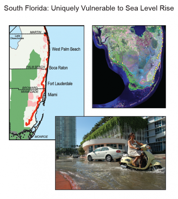 South Florida: Uniquely Vulnerable to Sea Level Rise