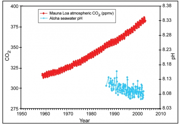 Ocean Acidification in the North Pacific